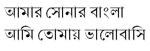 Nikosh Light Bangla Font
